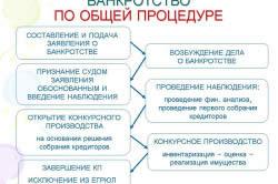 Банкроство ОАО по общей процедуре.