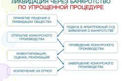 Банкротство ОАО по упрощенной процедуре.